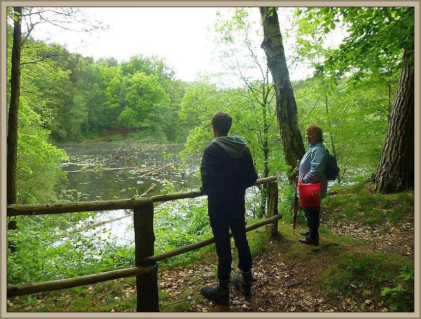 Jetzt befindet sich hier ein See und die trockenen Kronen von Eichen, die damals hier wuchsen, ragen noch aus dem Wasser..