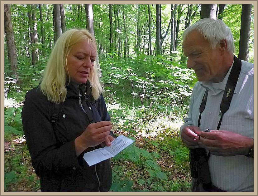 Vergeblich suchten wir in beiden Büchern den Buchenwald - Wasserfuß. Anhand einer Grafik über Faserblätterpilze konnte er zumindest den Hellsoporer zugeordnet werden.n