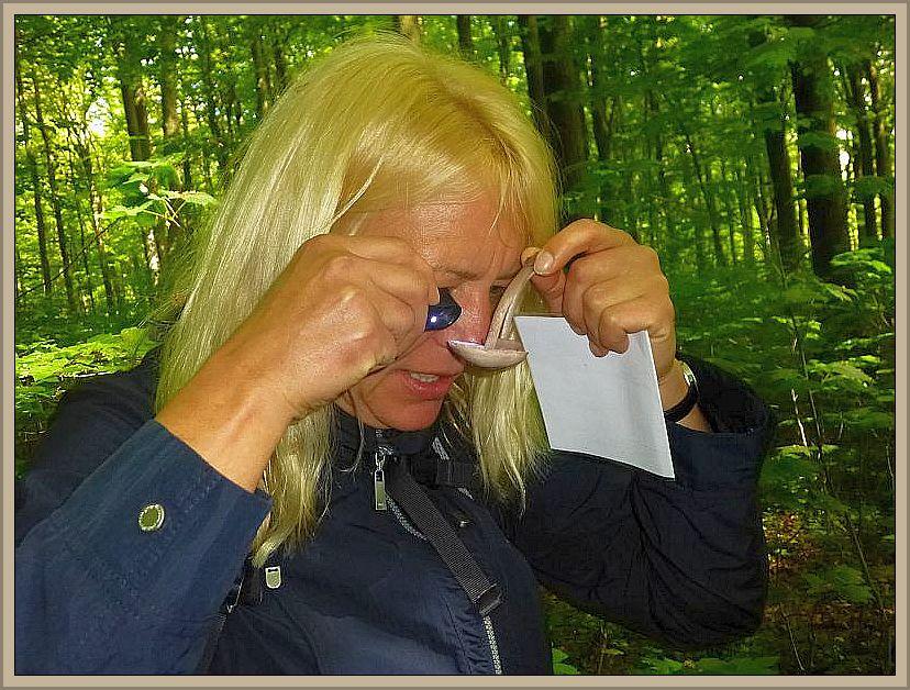 Es gibt nicht wenige Pilzarten, wo eine Lupe zum Erkennen bestimmter Feinheiten sehr hilfreich sein kann.