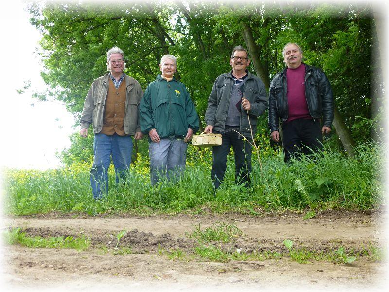 Wenig Pilze - wenig Leute. Unser Abschlußfoto am letzten Maitag des Jahres 2014 im Törber Holz bei Grevesmühlen.