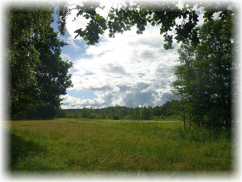 Wälder und naturnahe Wiesenflächen, die teils von Schafen beweidet werden, wechselten heute mit teils dichten Wäldern ab. Dazu ein reizvolles Wechselspiel von Sonnenschein und dicken Quellwolken, was die Landschaft ständig in ein anderes Licht erscheinen ließ.