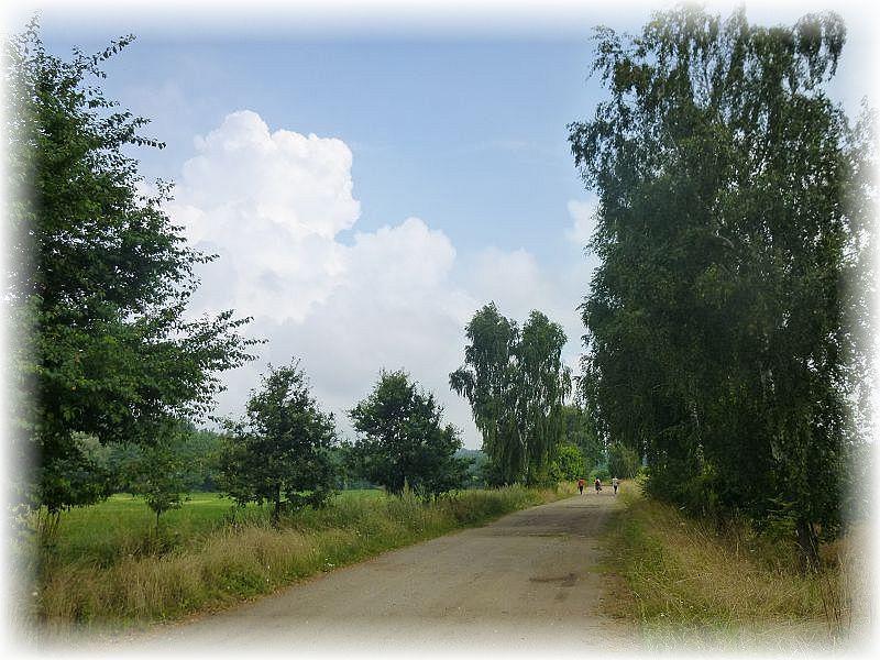 Bei verließen wir kurzzeitigi das Dickicht des Waldes und wanderten ein Stück weit durch diesen herrlichen Sommerweg in offener Landschaft.