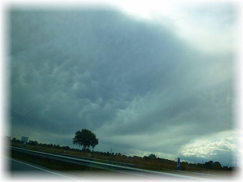 Niederschläge bab es in der letzten Zeit zumindest punktuell immer wieder. Sie fielen meist aus Schauerwolken und waren nicht flächendeckend b.z.w sehr unterschiedlich verteilt. Hier sehe wir auf der Rückseite einer hochreichenden Gewitterwolke sogenannte Mama - Wolken. Die Quellungen zeigen hier beutelförmig, an weibliche Brüste erinnernd nach unten. Diese wolkenform ist relativ selten und tritt bei besonders starker Konevektion auf der Rückseite von Gewittern auf. Das Foto entstand gestern Mittag bei Schönberg aus dem fahrenden Auto heraus fotografiert.