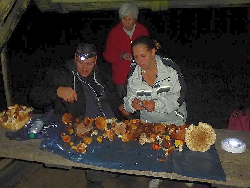 Gegen Mitternacht erreichten wir wieder unseren Ausgangspunkt und die Sammler breiteten ihre gesammlten Werke aus um sie vom Fachmann nochmals durschauen und erläutern zu lassen.