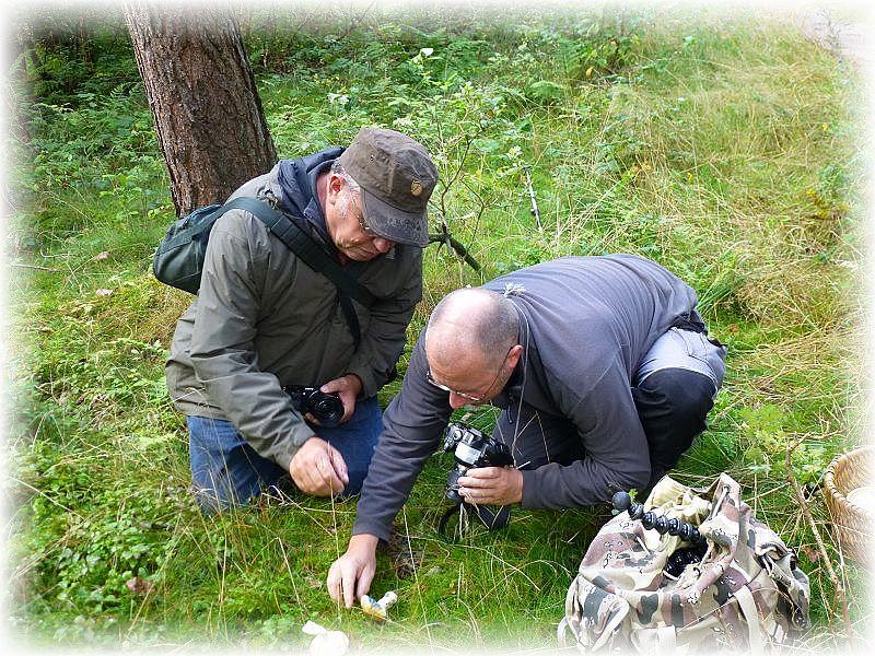 Ulrich Klein und Torsten Richter beim Fototermin mit dem Kornblumen - Röhrling. Foto: Reinhold Krakow