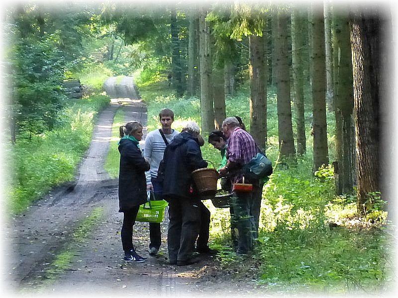Klaus Warning (rechts) erläutert einer Gruppe Pilzfreunde weitere Funde.