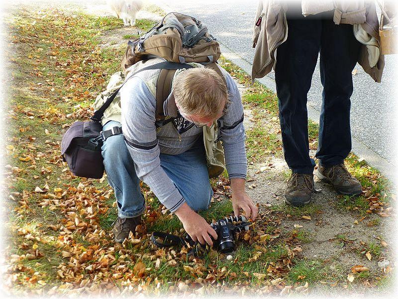 Aber auch hier kommen wir an den Pilzen nicht vorbei und sie bieten uns immer wieder neue Fotomotive.