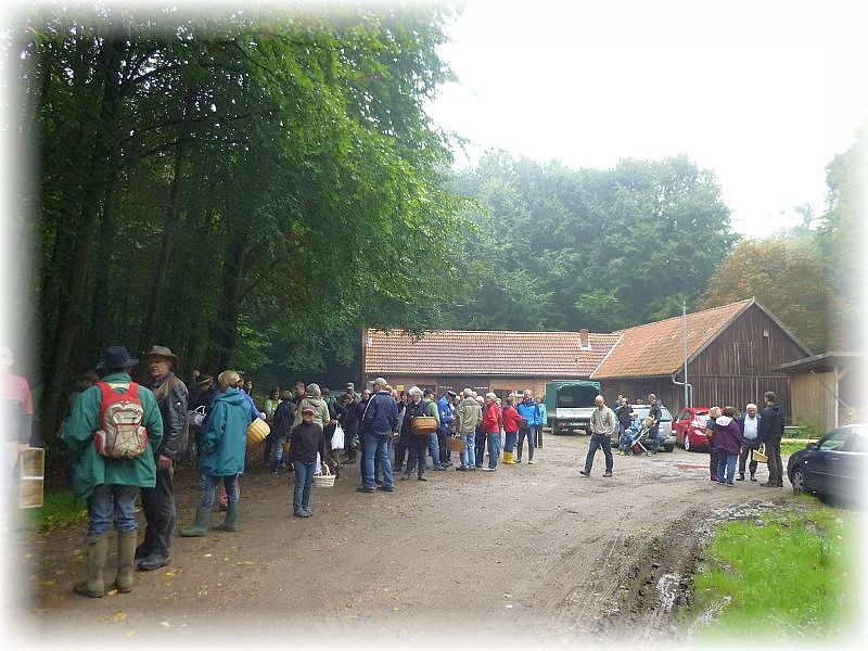 Auch in diesem Jahr folgten wieder viele Pilzfreunde der Einladung des BUND im Kreis Herzogtum Lauenburg zu Pilzwanderungen und anschließender Verköstigung der gesammelten Werke.