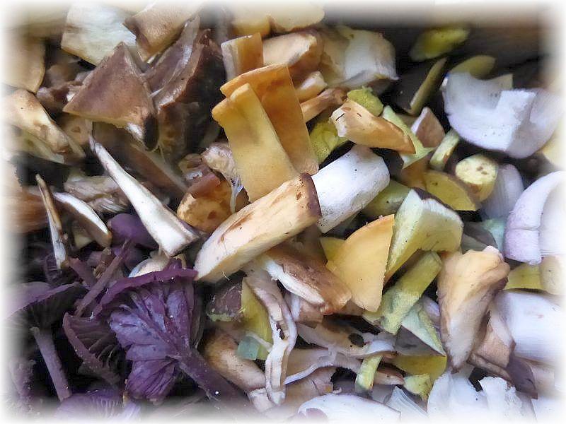 Die nächste bunte Mischung ist fertig und darf in die große Pilzpfanne zu den eingekauften Edelpilzen.