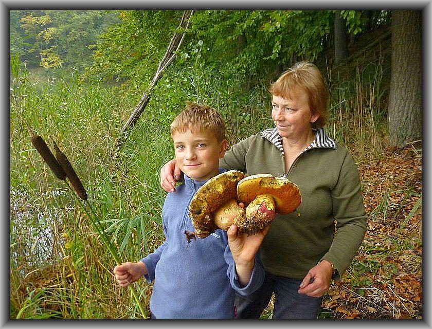 Irena und Jonas von den Wismarer Pilzfreunden waren noch schnell zum Deichelsee gefahren, um diese Satans - Röhrlinge für die Ausstellung zu organisieren. Schließlich sind diese Raritäten wirklich nicht überall zu finden.