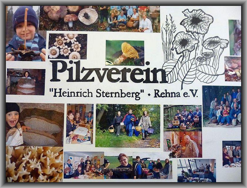 Das Logo des Rehnaer Pilzvereins mit den in dieser Region mutunter massenhaft vorkommenden Herbsttrompeten und vieln Bildern der Aktivitäten vergangener Jahr begrüßt die Besucher am Eingang zur Ausstellung.