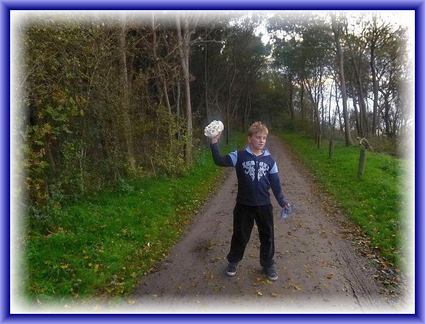 Natürlich sahen und fanden wir auch Pilze. Nachdem ich einen schönen runden und makelosen Riesenbovist im Küstenwald entdeckte und diesem unseren Reiseleiter schenkte, hat Jonas einen weiteren entdeckt.