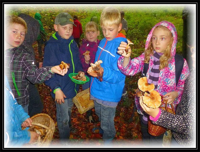 Pilze gab es heute wirklich auf Schritt und Tritt, so dass die Kinder ständig welche in den Händen hielten und auf eine positive Antwort meinerseits warteten, was ihre Essbarkeit anbelangte.