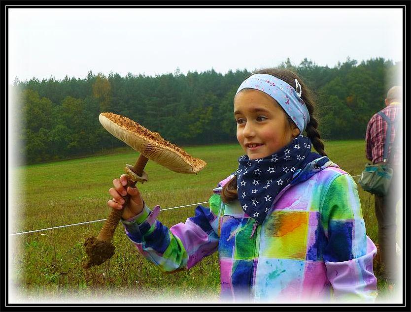 Freude und Bewunderung sind diesem Mädchen im Gesicht abzulesen, über diesen wirklich ansehlichen Riesenschirmpilz (Macrolepiota procera). Da er in den Korb nicht hinnein paßte, trug sie ihn bis zum Schluß stolz in der Hand.Sie trug ihn