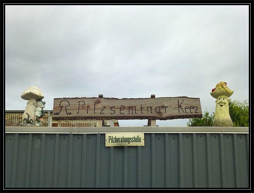 Zum 3. mal in Folge fand in Keez, bei Brüel, unser herbstliches Pilzwochenende in Mecklenburg statt.