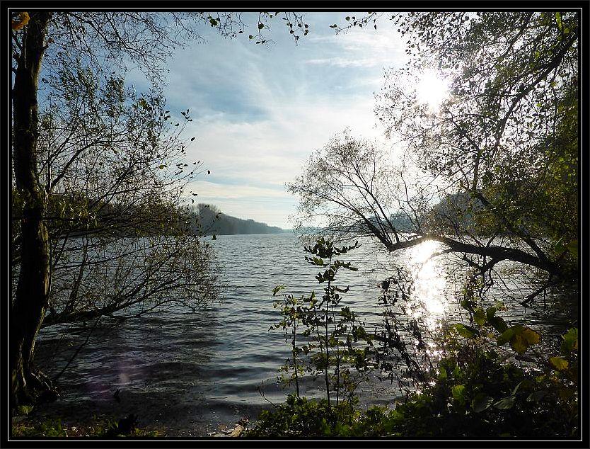 Der langgezogene Schweriner See war heute das Ziel unserer Kartierungsexkursion. Foto 09.11.2014.