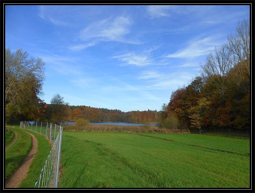 Vorübergehend führte der Wanderweg nun aus dem waldartigen Uferbereich des Neumühler Sees an Wiesen und Felder vorbei.