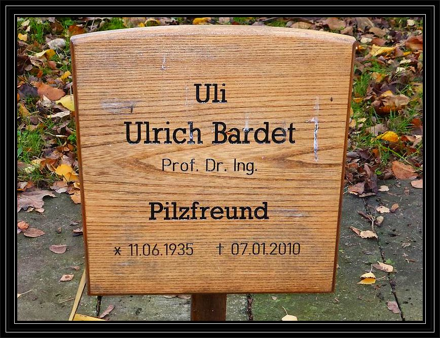 Bei der Gelegenheit stattete ich zusammen mit Pilzfreundin Erika noch einen Besuch der Grabstelle unseres im Jahr 2010 verstorbenen Pilzfreundes Ulrich Bardet ab. Erika war die letzte Lebensgefärtin von Ulrich. Beide lernten sich über die Pilze kennen auf unseren gemeinsammen Wanderungen näher kennen und schützen.