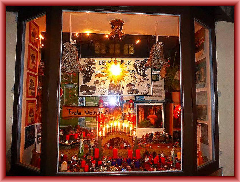 Wir wünschen allen Pilzfreunden und Leser dieser Homepage eine besinnliche Advents- und Weihnachtszeit und einen guten Rutsch in das Jahr 2015.
