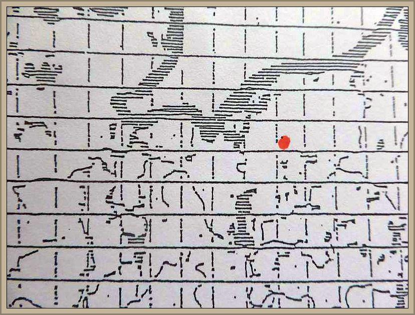 Bisporella palescens (Pers. ex S.F. Gray) Karpenter & Korf - Blasses - Buchenbecherchen