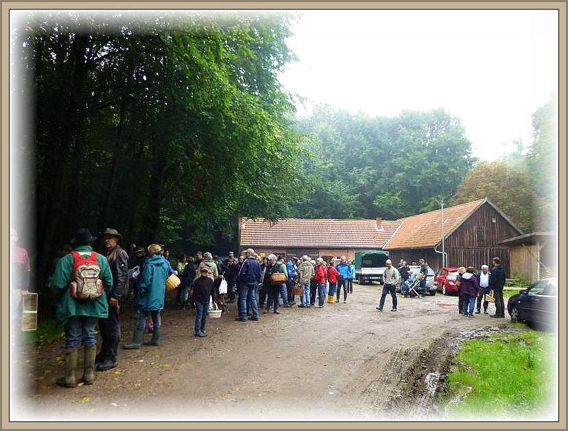 Großes Andrang im vergangenen Jahr am alten Forsthof bei Ritzerau.