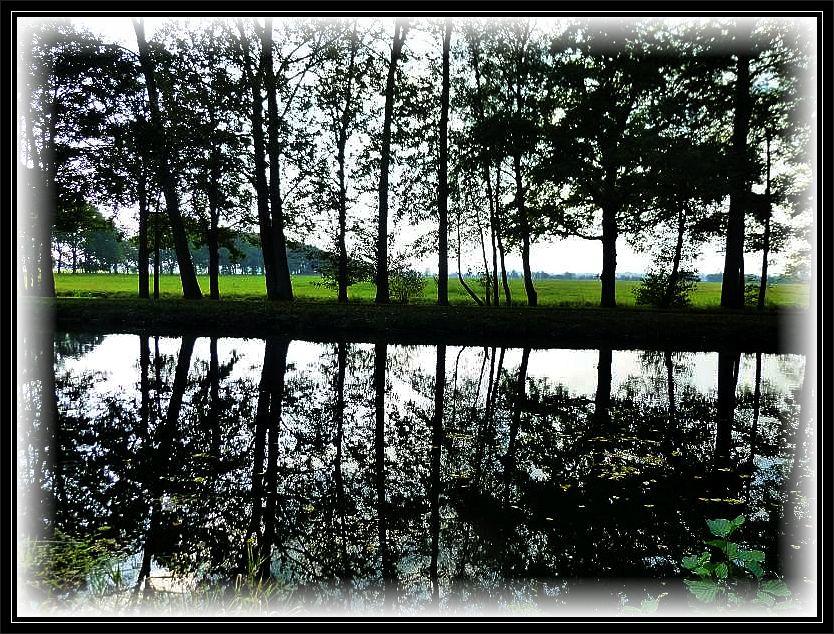 Der romatisch zwischen den Lewitzwiesen und ausgedehnten Wäldern fließende Störkanal entsrpingt dem Schweriner See und geht schließlich in die Elde - Müritz - Wasserstraße über.