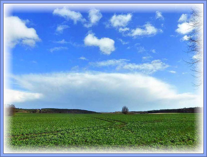 Mit Aprilwetter wie es im Buche steht startete wir heute in die Pilzsaison 2015. Sonne und teils kräftige Schauer und Gewitter mit Sturmböen, bei sehr frischen Temperaturen wechselten einander ab. Foto: 01.04.2015. Blick von Jesendorf aus in südöstlicher Richtung.