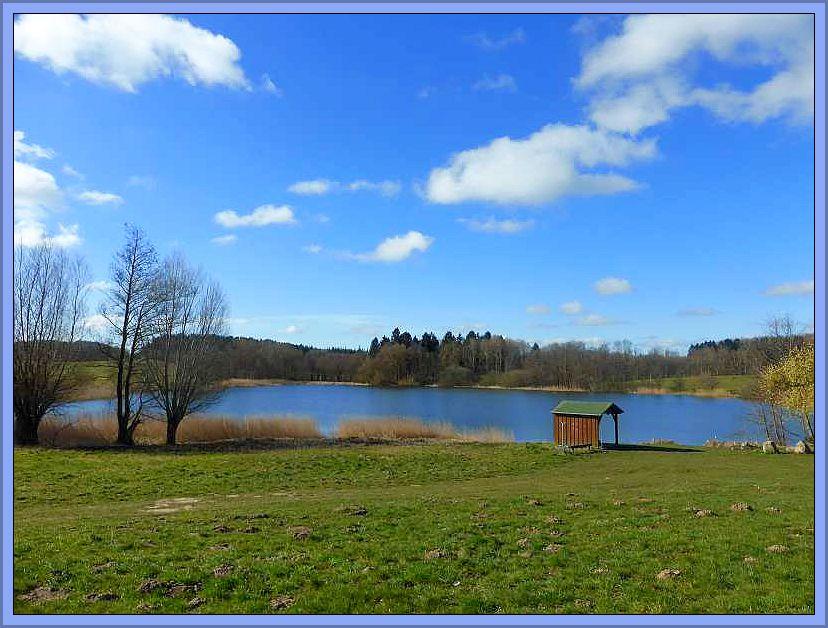 Tiefblauer Himmel, verziert mit einigen Quellwolken und bei angenehm warmen Sonnenschein trafen wir und heute an diesem idyllisch gelegen See bei Alt Karin zu unserer 1. Pilzwanderung zur Saisoneröffnung 2015.Sonnenschein