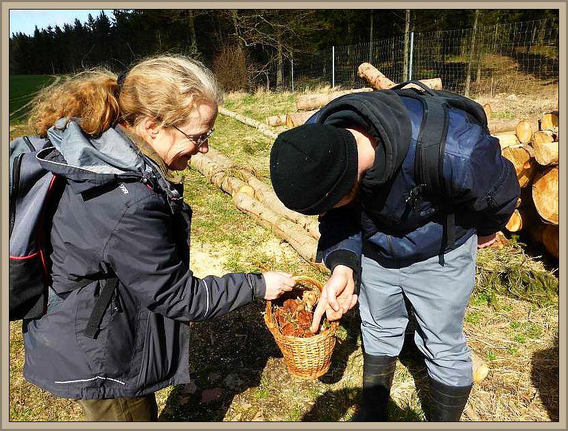 Der Korb von Pilzfreundin Monika Leister aus Lübeck war am Schluß randvoll. Das weckte natürlich auch das Interesse der anderen Pilzfreunde.