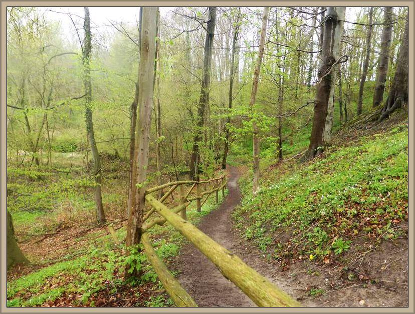 Ein gut ausgebauter Wanderweg fährt durch das teils tief eingeschnittenen, ca. 2 Km lange Hellbachtal.