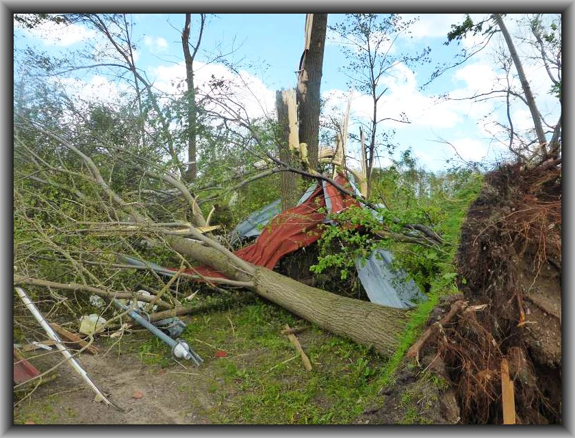 Entwurzelte und abgebrochnene Bäume sowie umhergeflogene Trümmer ohne Ende.