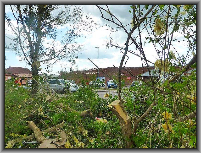 Das Dach dieses Einkaufsmarktes hat sich selbständig gemacht und die Reste haben sich im Geäst der ebenfalls zerlegten Parkanlage verfangen.