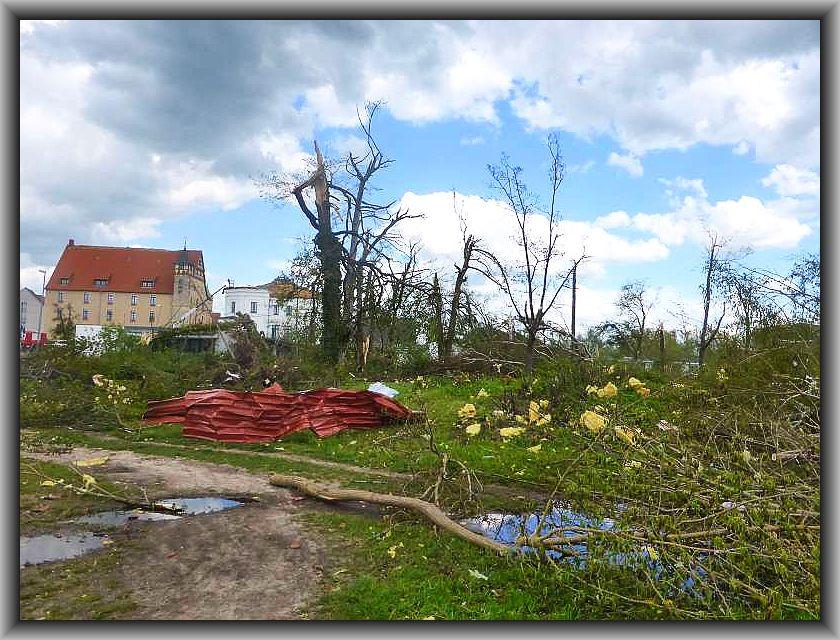Alles übersät mit Trümmern, geäst und zerlegter Bäume.