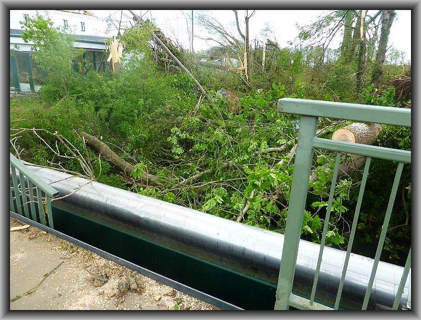 Umstürzende Bäume durchschlugen dieses Brückengeländer.