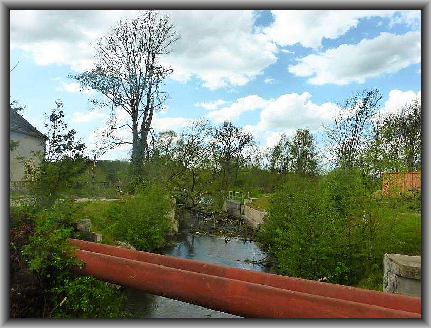 Auch auf der anderen Seite dieses Flüßchens stürzten Bäume in den Bachlauf.