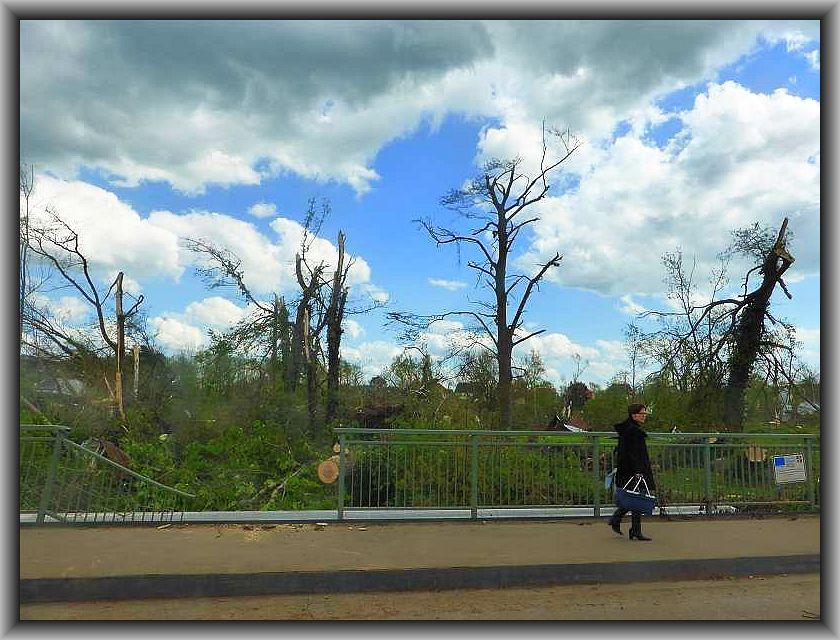 Gerade hatten sich die vielen Bäume hier ihr zartes Maigrün nach den kargen Wintermonaten angelegt, nach nur 10 Minuten Weltuntergangsstimmung in Bützow sind aus ihnen tote Ruhinen geworden. Ein Bild wie nach einem Bombenangriff!