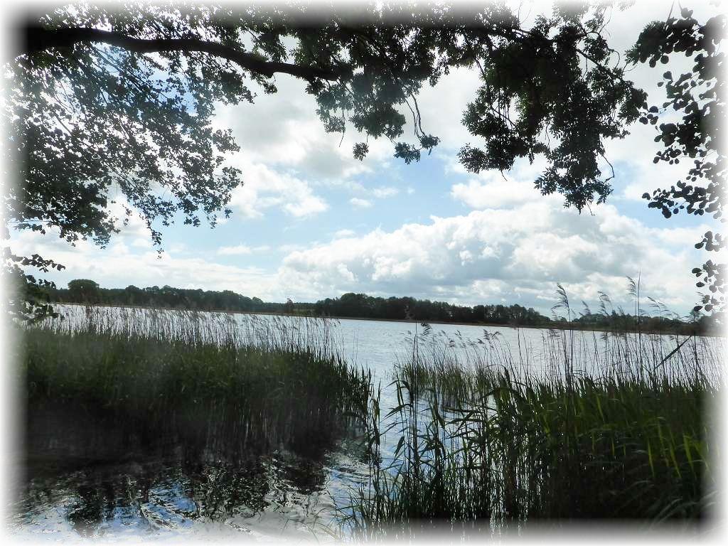 Nahezu minütlich änderte sich heute das Licht. Während es auf dem Bild voraus noch freundlich aussieht, droht aud dem Hintergrund eine düstere Schauerwolke, was auf dem Foto vom Bibowsee deutlich zu erahnen ist.