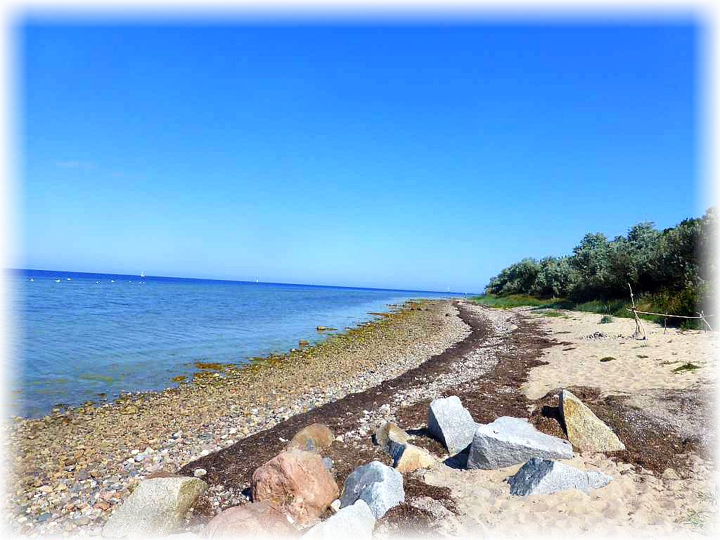 Weitgehend naturbelassen und steinig ist der FKK - Strand bei Hinter Wangern auf der Ostseeinsel Poel und bis zum Nachmittag heute auch fast menschenleer. Spätestens mit Beginn der Hochsaison ändert sich dieses aber auch hier. Trotzdem ist hier jeder bestens aufgehoben, der etwas mehr Ruhe und Natürlichkeit sucht, als an den Strandabschnitten die feinsandig und unweit der Betonwüsten zahlreicher