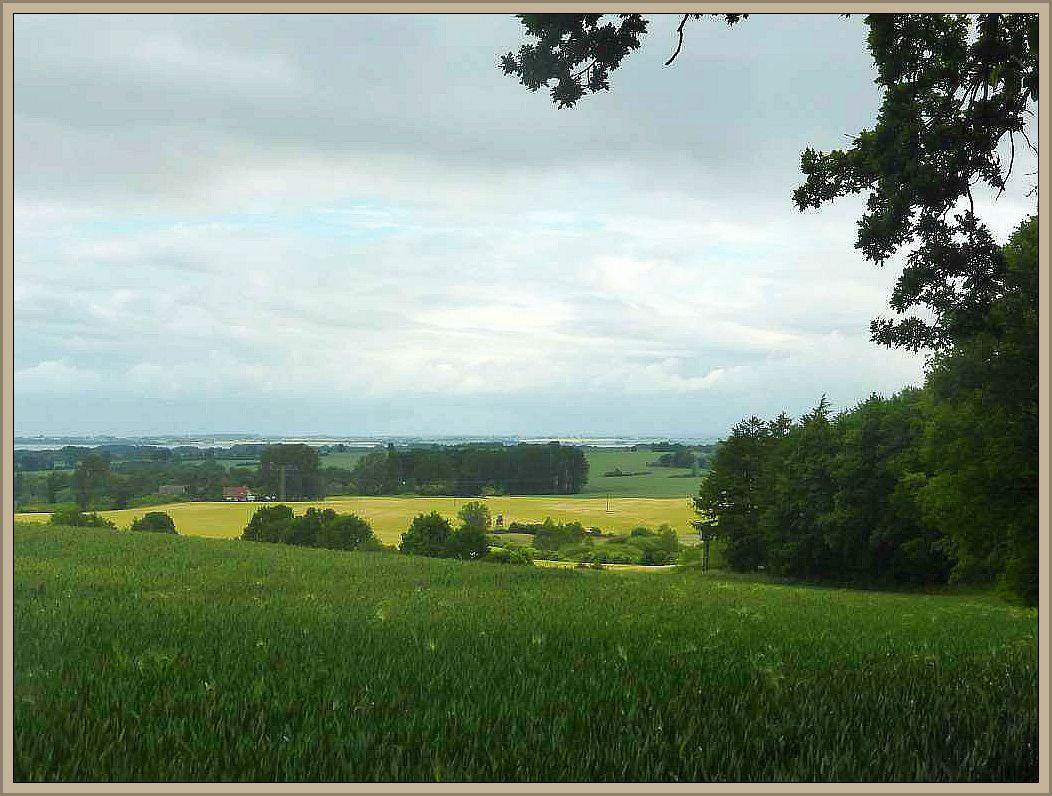 Heute bin ich zum Forst Jamel vor den Toren der Hansestadt Wismar gefahren. Die hügelige Landschaft läßt außerhalb des Walödes weite Einblicke in die Landschaft zu. Der Blick schweift hier in Richtung Wismarbucht in der Ostsee und im weiteren Hintergrund ist sogar die Insel Poel zu erahnen. Die Erhebungen steigen hier teils mehr als hundert Meter über den Meeresspiegel an. Foto: 19.Juni 2015.