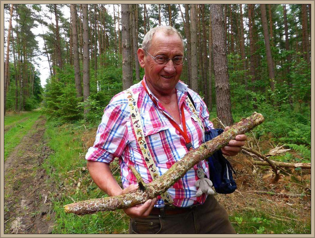 Klaus Warning ist bekanntlich Pilzberater in Bützow. ihn interessieren aber nicht nur Speisepilze und ihre giftigen Doppelgänger, sondern alles was irgendwiei nach Pilz aussieht. Hier ist es ein Knüppel von Kiefer der überzogen ist vom Gemeinen Violettporling. Zu Beachten sind auch die standesgemäßen Hosenträger!