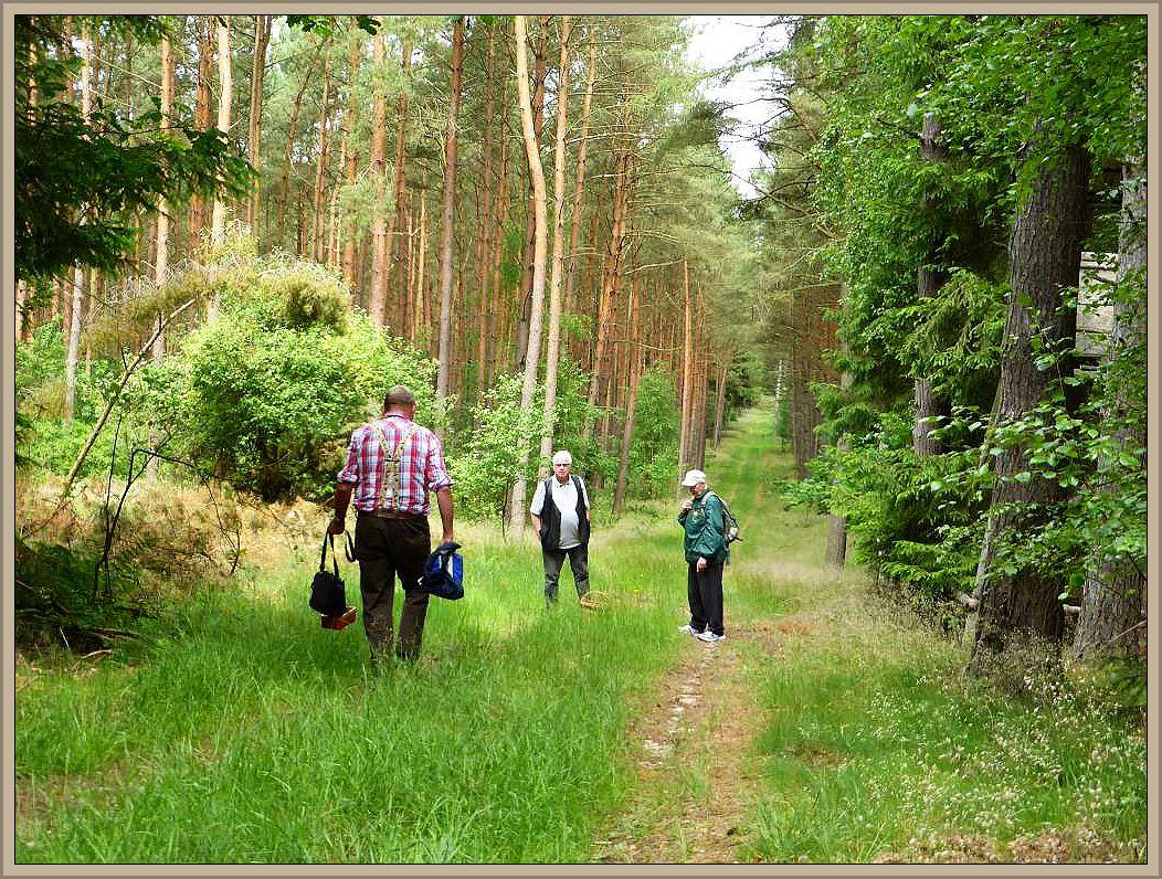 Helga und Jochen haben wieder etwas mitten auf dem Weg in der Grasnarbe entdeckt und Klaus eilt sogleich zu ihnen.