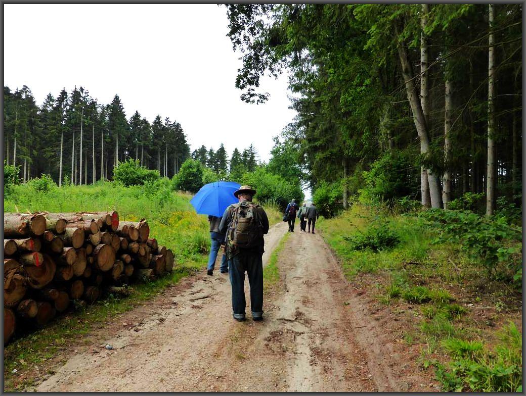 Inzwischen hat Regen eingestzt. Gut bedient ist, wer an wetterfeste Kleidung gerdacht hat oder zumindest einen Regenschirm zur Hand hat.
