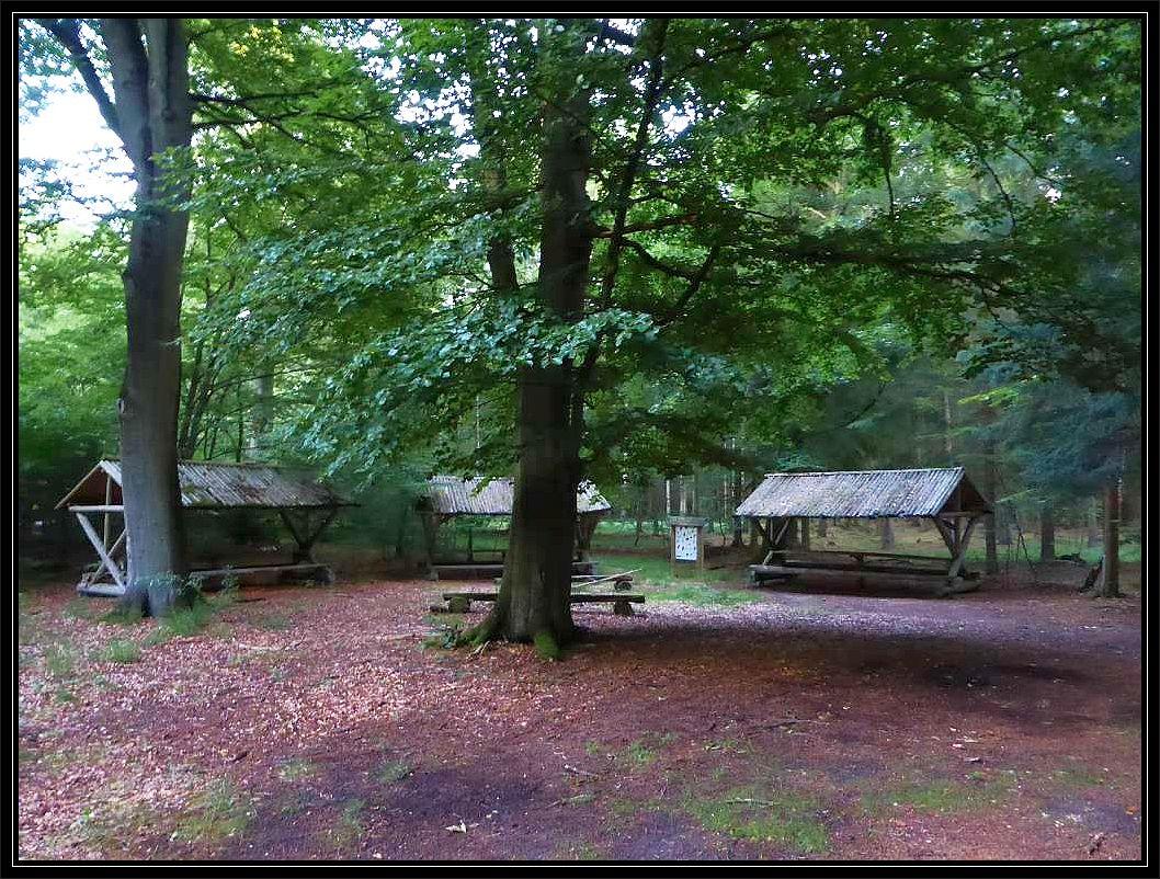 Der Rastplatz am Wasserloch. Das Wasserloch befindet sich weiter rechts, wo auch noch eine weitere, große, runde, überdachte Wanderhütte steht. Ein wunderschöner Ort um uns unsere wohlverdiente, nächtliche Pilzmahlzeit zu verdrücken. Hier können gut und gerne an die fünfzig Leute gemütlich zu Tisch sitzen.