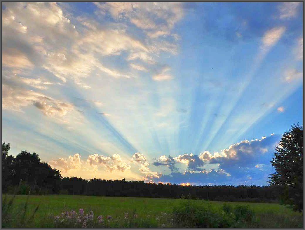 Womöglich werden wir auch in der nächsten Zeit ein ähnliches Himmelsbild wie hier über der Neukloster Forst am Freitag Abend bewundern können. Typische Gewitterbewölung an die jeder aufmerksamme Natur- und Wetterbeobachter erkennen kann, das es jederzeit ordentlich krachen kann. Solche Wolken müssen, ist man im freien unterwegs, ständig beobachtet werden, will man nicht von einem Gewitter überascht werden, denn dieses kann sich auch aus solch lockeren Wolken in kürzester Zeit bilden.