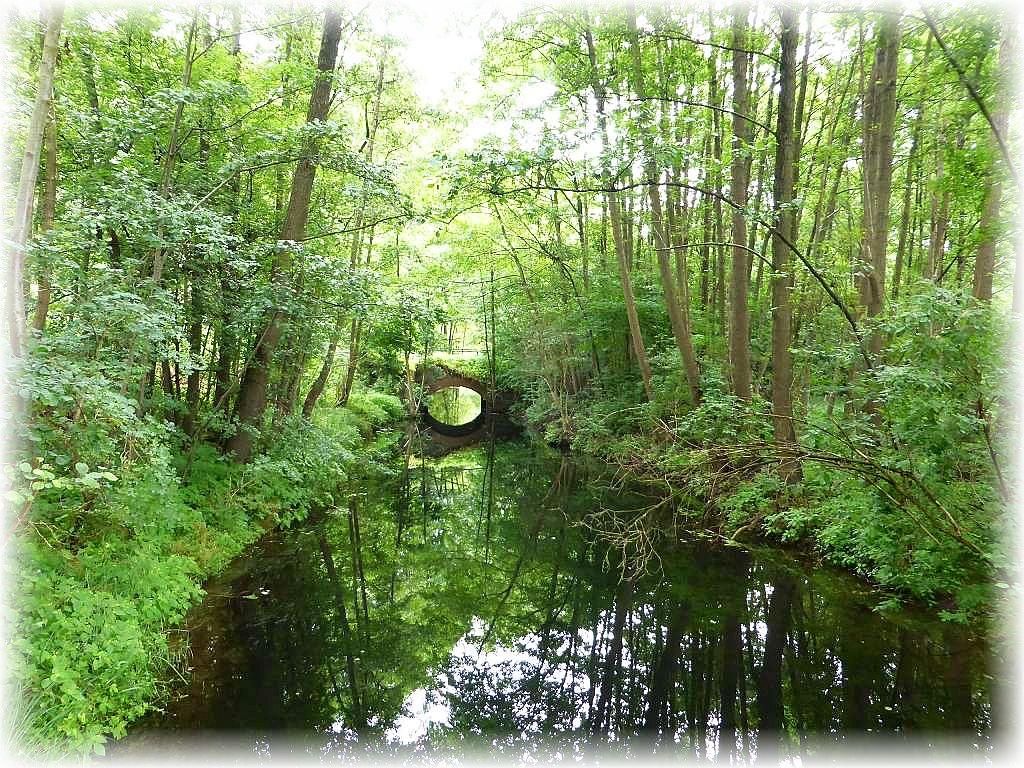 Durch das Gebiet fließt die Mildenitz, die bei Groß Görnow schließlich in die Warnow mündet..