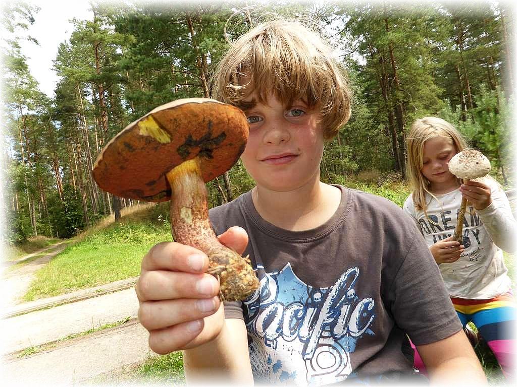 Sie haben heute wirklich die schönsten Pilze gufunden und die Freude über ihre Fundstücke ist ihnen zweifelsohne anzusehen.