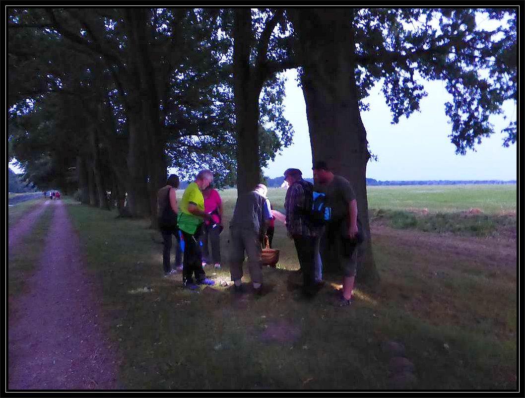 Es ist zwar noch nicht richtig dunkel, aber ohne Lampen hääte wir die Pilze, die hier das Interesse der Teilnehmer wecken, kaum gefunden.