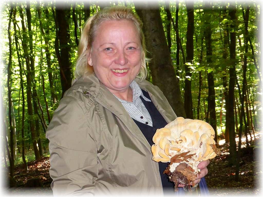 Wer sich daran nicht stößt, kann sich auf eine frische, selbstgesammelte Pilzmahlzeit aus dem Walde freuen.