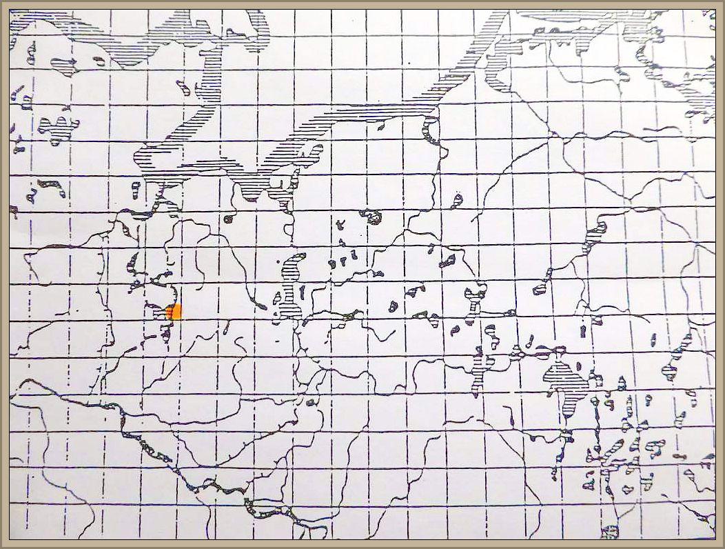 Catinella olivacea (Batsch: Pers.) Boud. - Olivfarbenes Kelchbecherchen