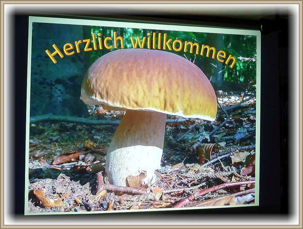 Gegen 14.00 Uhr begann Ulrich Klein seinen Theorieteil mit einem herzlich willkommen zum Pilzwochenende des Steinpilz - Wismar.